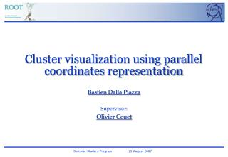 Cluster visualization using parallel coordinates representation
