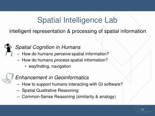 Spatial Intelligence Lab