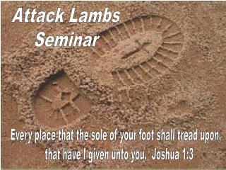 Attack Lambs Seminar