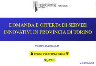 DOMANDA E  OFFERTA  DI SERVIZI INNOVATIVI IN PROVINCIA DI TORINO