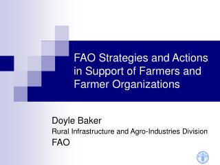 FAO Strategies and Actions in Support of Farmers and Farmer Organizations