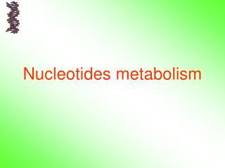 Nucleotides metabolism