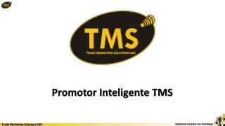 Promotor Inteligente TMS