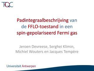 Padintegraalbeschrijving  van de FFLO- toestand  in  een  spin- gepolariseerd  Fermi gas