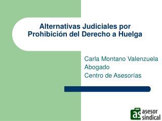 Alternativas Judiciales por Prohibici n del Derecho a Huelga