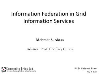 Information Federation in Grid Information Services
