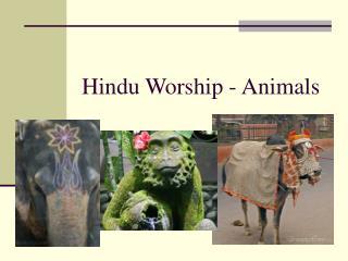 Hindu Worship - Animals