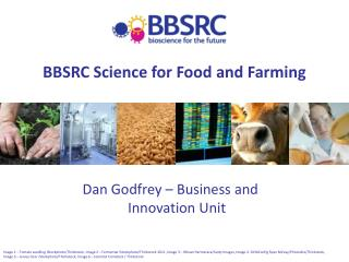 BBSRC Science for Food and Farming