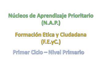 Núcleos de Aprendizaje Prioritario (N.A.P.)