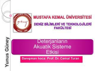 Danışman hoca: Prof. Dr. Cemal Turan