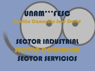 UNAM'''FESC Badillo  Camarillo  José David SECTOR  INDUSTRIAL SECTOR COMERCIAL  SECTOR SERVICIOS