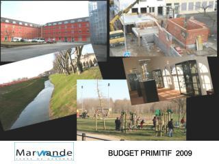 BUDGET PRIMITIF  2009