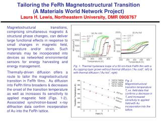 Tailoring the FeRh Magnetostructural Transition