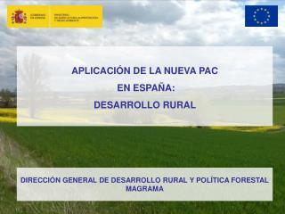 APLICACIÓN DE LA NUEVA PAC  EN ESPAÑA: DESARROLLO RURAL