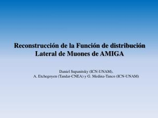 Reconstrucción de la Función de distribución Lateral de Muones de AMIGA