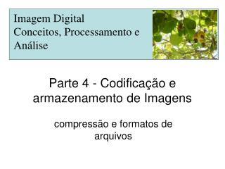 Parte 4 - Codificação e armazenamento de Imagens