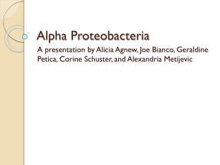 Alpha Proteobacteria