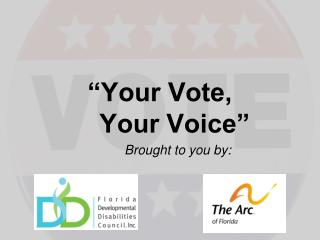 """Your Vote,      Your Voice"""