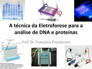 A técnica da Eletroforese para a análise de DNA e proteínas