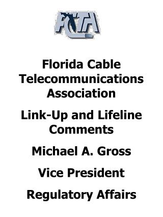 Florida Cable Telecommunications Association Link-Up and Lifeline Comments Michael A. Gross