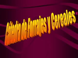 C tedra de Forrajes y Cereales