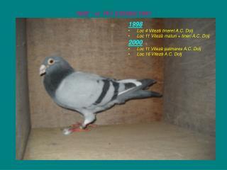 """ 908 ""  –ul   RO  220908 / 1997"