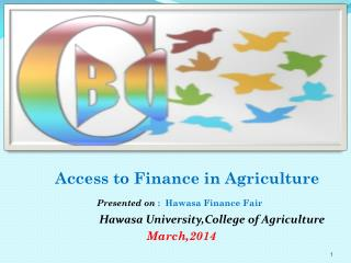 Access to Finance in Agriculture Presented on  :  Hawasa Finance Fair