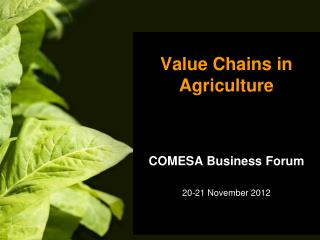 Value Chains in Agriculture COMESA Business Forum 20-21 November 2012