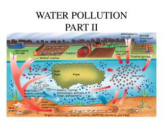 WATER POLLUTION  PART II
