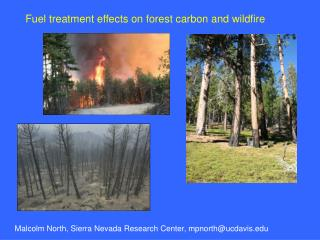 Fuel treatment effects on forest carbon and wildfire