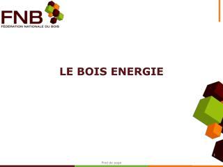 LE BOIS ENERGIE