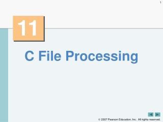 C File Processing