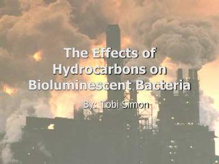 The Effects of Hydrocarbons on Bioluminescent Bacteria