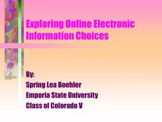 Exploring Online Electronic Information Choices