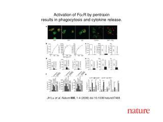 JH Lu  et al. Nature 000 , 1-4 (2008) doi:10.1038/nature07468