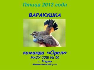 Птица 2012 года ВАРАКУШКА команда «Орел» МАОУ СОШ № 50 г. Пермь Мотовилихинский р-он