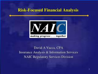 Risk-Focused Financial Analysis