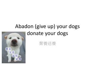 Abadon (give up) your dogs donate your dogs