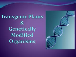 Transgenic Plants  & Genetically Modified Organisms
