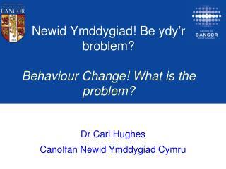 Newid Ymddygiad !  Be  ydy'r broblem ? Behaviour Change! What is the problem?