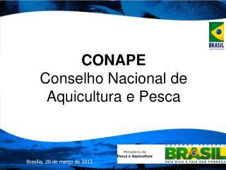 CONAPE Conselho Nacional de Aquicultura e Pesca