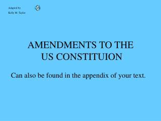 AMENDMENTS TO THE  US CONSTITUION