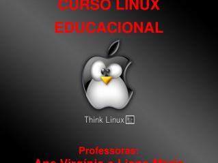 CURSO LINUX EDUCACIONAL Professoras:  Ana Virgínia e Liane Maria