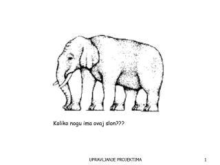 Koliko nogu ima ovaj slon???