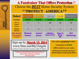 Choose the  BEST  Home Security System  ** PROTECT   AMERICA **