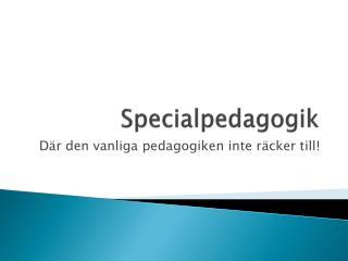 Specialpedagogik