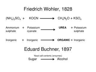 Friedrich Wohler, 1828