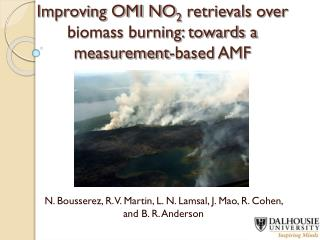 Improving OMI NO 2  retrievals over biomass burning: towards a measurement-based AMF