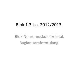Blok 1.3 t.a. 2012/2013.