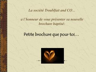 La soci�t� Troublfait and CO� a l�honneur de vous pr�senter sa nouvelle brochure baptis�: